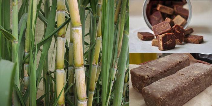 Gian nan nghề làm đường phên của người Mông
